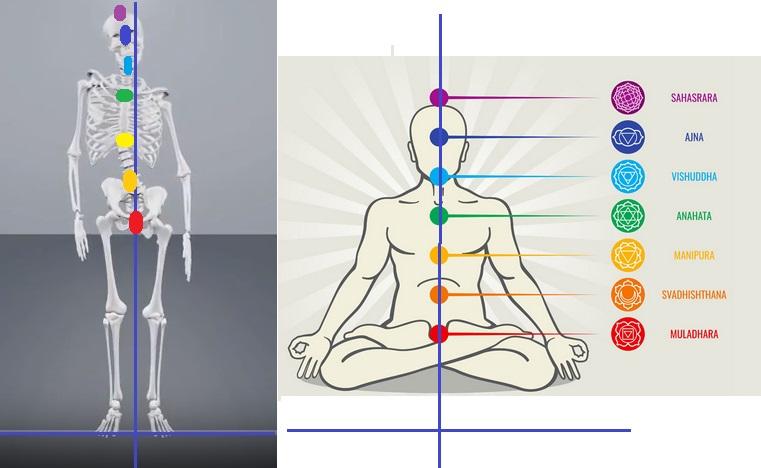 Yoga, Meditazione, Ayurveda, Agopuntura: Chakra e Meridiani si ri-allineano solo su un corpo in Equilibrio Meccanico Abituale con il CPT-OG